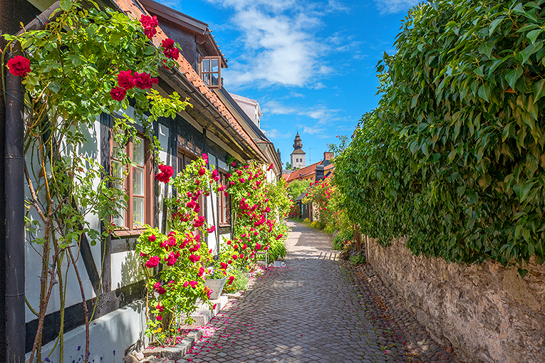 Medieval alley in the historic Hanse town Visby on Swedish Balti